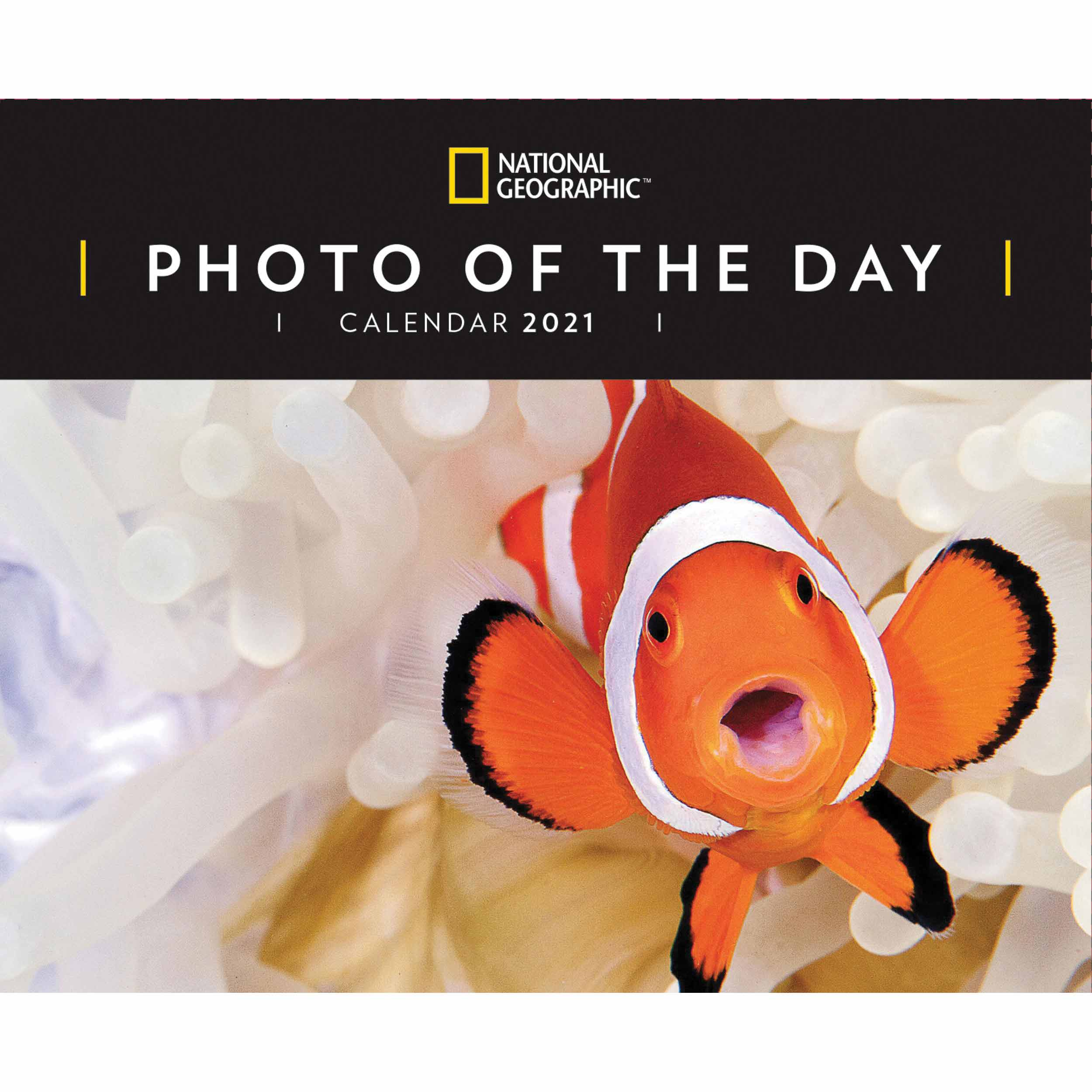 National Geographic, Photo Of The Day Desk Calendar 2021 at