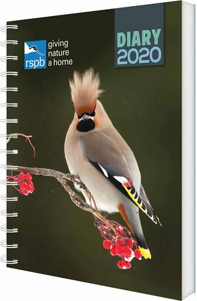 Buy from 5000+ Calendars, Planners, Diaries, Stationery